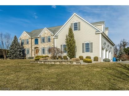 8 VAN FLEET RD  Readington Twp, NJ MLS# 3529799