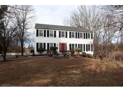 13 CENTURY RD  Readington Twp, NJ MLS# 3530147
