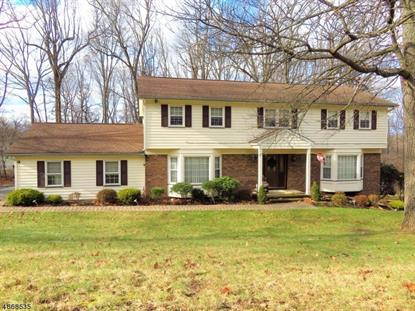 39 BIRCH RUN AVE  Denville, NJ MLS# 3530221