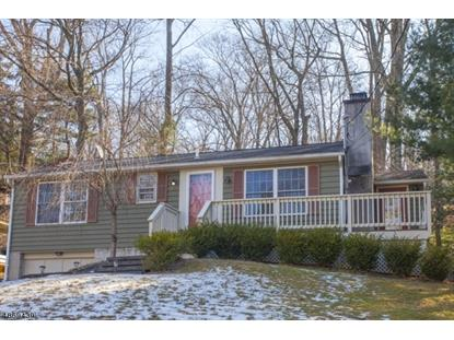 11 HILLSIDE RD  Sparta, NJ MLS# 3530852