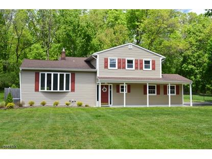 90 CLOVER HILL RD  Long Hill Twp, NJ MLS# 3558069