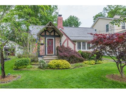 30 LINCOLN AVE  Parsippany-Troy Hills Twp., NJ MLS# 3560120