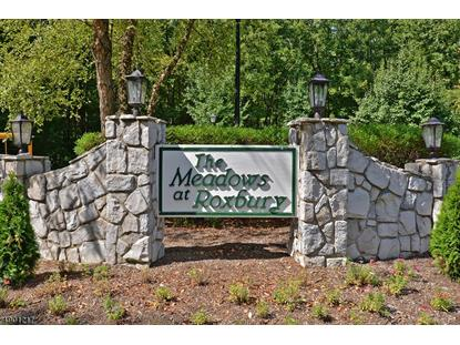 240 WOODS EDGE DR  Roxbury Twp, NJ MLS# 3560417