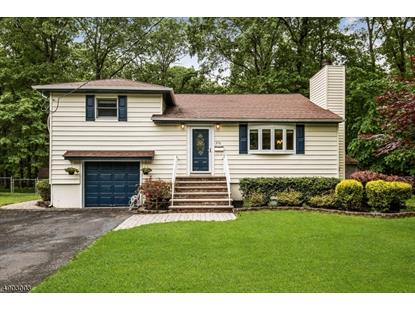 276 PASSAIC AVE  Long Hill Twp, NJ MLS# 3562161