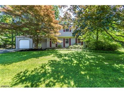 1256 DOGWOOD DR  Bridgewater, NJ MLS# 3564748