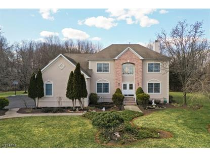 6 FIELDFLOWER DR  Montgomery, NJ MLS# 3566076