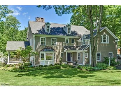 121 MINE MOUNT RD  Bernardsville, NJ MLS# 3567124