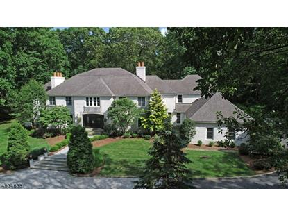 106 RAVINE LAKE RD  Bernardsville, NJ MLS# 3569738
