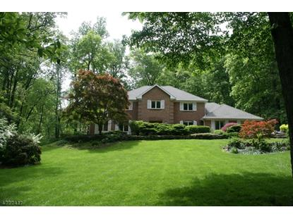 12 RIPPLING BROOK WAY  Bernardsville, NJ MLS# 3571984