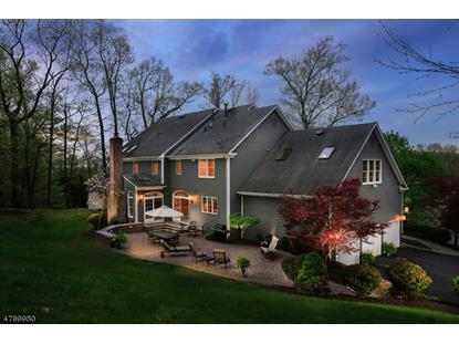 27 LAURELWOOD DR  Bernardsville, NJ MLS# 3573098