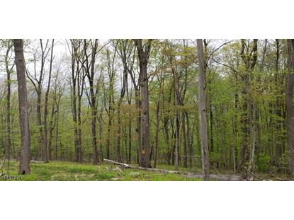 408 MOUNTAIN LAKE RD Liberty Township,NJ MLS#3575709