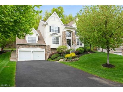 232 W END AVE  Green Brook, NJ MLS# 3586087