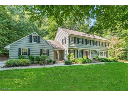 45 MILE DR  Chester, NJ MLS# 3586984