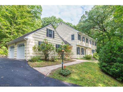 43 MILE DRIVE  Chester, NJ MLS# 3587894