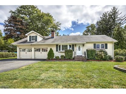 138 MAPLE AVE  Chester, NJ MLS# 3590606