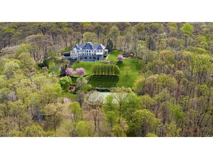 159 PENNBROOK RD  Far Hills, NJ MLS# 3591317