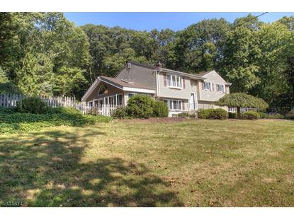 253 NORTH RD  Chester, NJ MLS# 3591718