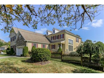 11 Brown Ct  Chester, NJ MLS# 3592095