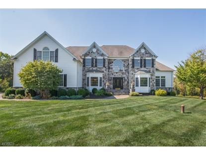 3 ORR TER  Chester, NJ MLS# 3592135