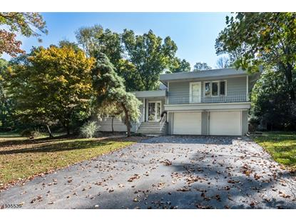 25 CHERRY TREE LN  Chester, NJ MLS# 3592323