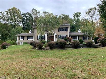 1 Deer Ct  Chester, NJ MLS# 3594487