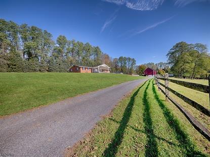 1741 Raub Lane HARMONY TOWNSHIP,新泽西州MLS#3594698