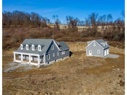 4 FOREST VIEW DR  Holland Township, NJ MLS# 3603038