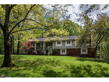 30 SUN VALLEY RD  Ramsey, NJ MLS# 3611805