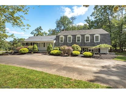 185 KNOLLWOOD DR  Watchung, NJ MLS# 3613719