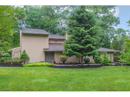 11 BIRCHWOOD LN  Boonton Township, NJ MLS# 3614472