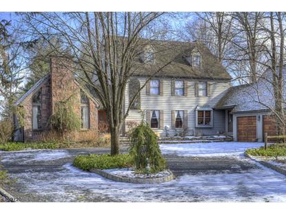 9 APPLEWOOD DR Hopewell Township,新泽西州MLS#3614656