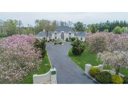 35 MEADOW LN  Harding Twp., NJ MLS# 3614685