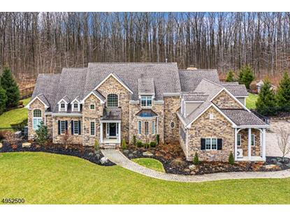 420 MINE RD  Bethlehem Township, NJ MLS# 3615522