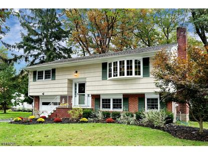166 GROVE ST  Ramsey, NJ MLS# 3616273