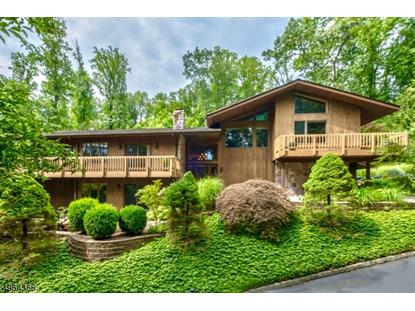 370 SIDNEY RD Franklin Twp,NJ MLS#3617628