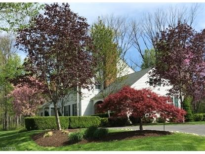 19 FOX HUNT RD Harding Twp。,NJ MLS#3617676