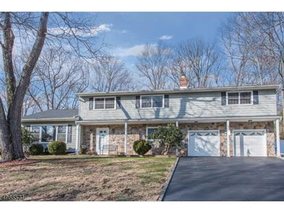 9 MISTY MOUNTAIN RD  Randolph, NJ MLS# 3619990