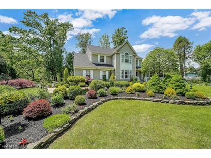42 FARVIEW DR INDEPENDENCE TW,NJ MLS#3619996