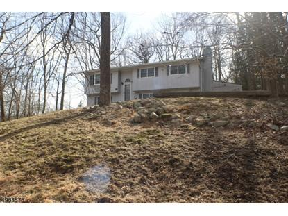 SLEEPY HOLLOW RD Byram Township,新泽西州MLS#3621236