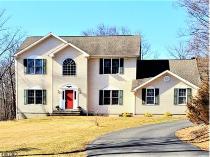 155 MOHICAN RD  Blairstown, NJ MLS# 3621710