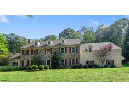 4 SHENANDOAH CT  Washington Township, NJ MLS# 3622206