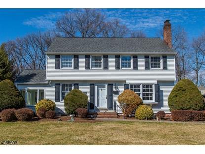 32 ELIZABETH AVE  Pequannock Township, NJ MLS# 3622381