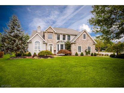 9 N SHORE CT  Montgomery, NJ MLS# 3622864
