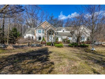 12 LIBERTY HILLS CT  Washington Township, NJ MLS# 3622887