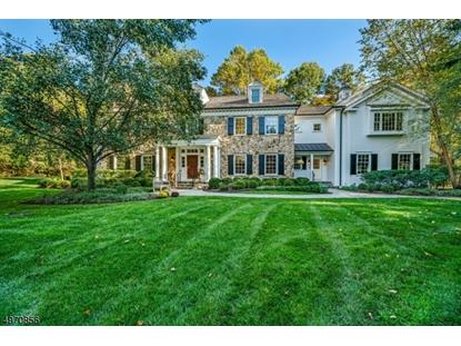 7 HAWKS NEST LN Harding Twp。,NJ MLS#3623343