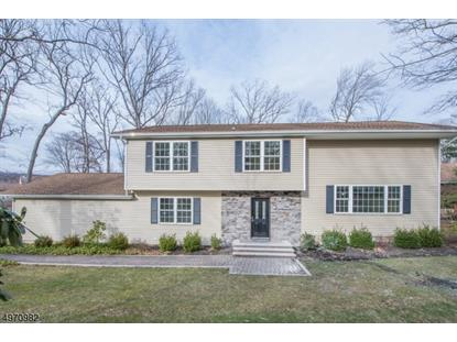 4 SPRING HILL CT  Randolph, NJ MLS# 3623516