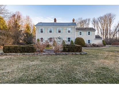 575 CHERRY VALLEY RD  Montgomery, NJ MLS# 3623529