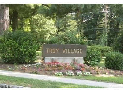 15-B TROY DR斯普林菲尔德,新泽西州MLS#3625451
