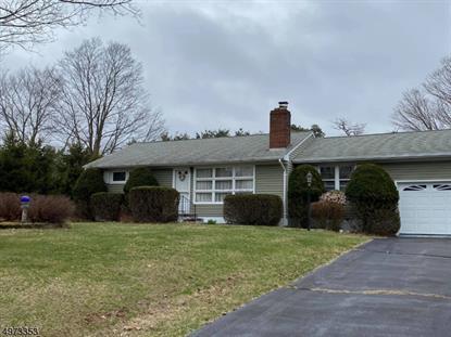 227 FLANDERS-NETCONG RD Mount Olive,NJ MLS#3625643