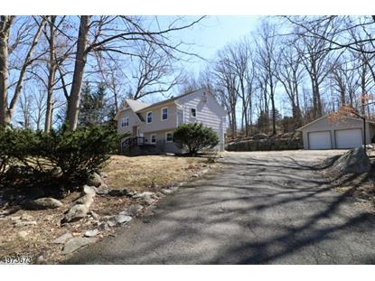 17 WATERLOO RD Byram,NJ MLS#3625934